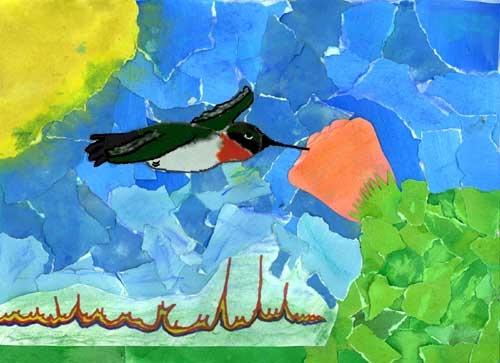 Audubon Adventures inspired artwork.