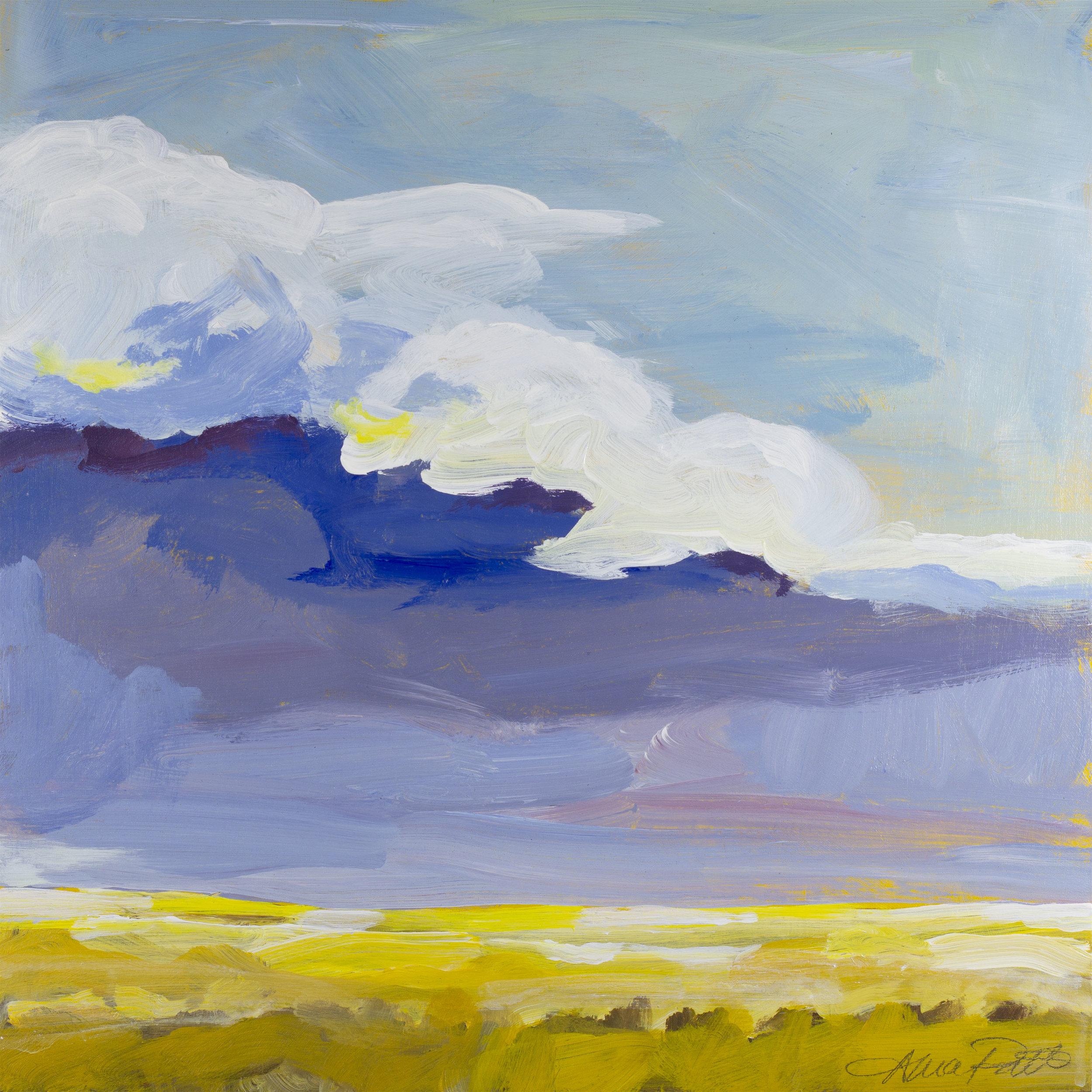 Moody Prairie