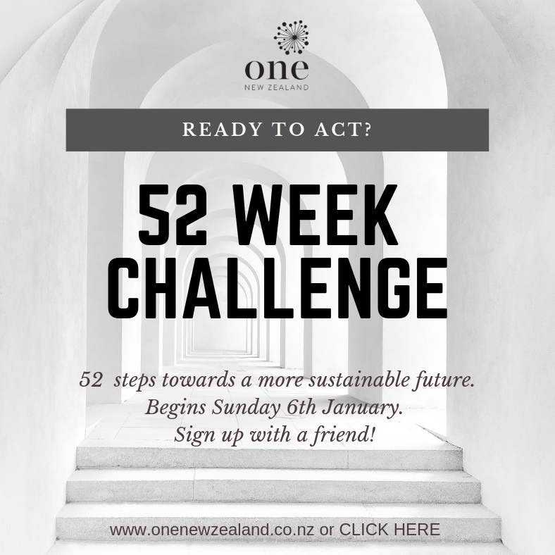 The 52 Week Challenge is a year long journey into the wonderful world of sustainability. Focused on small (and some big) acts that we can all do to transform our communities for good.