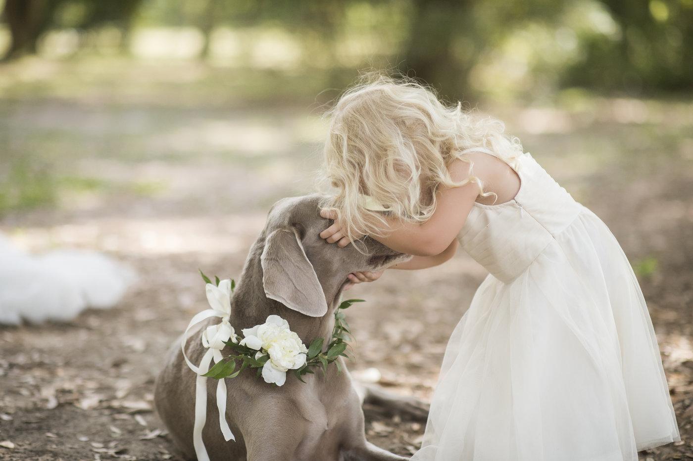 Lilly Dog Pic.jpg