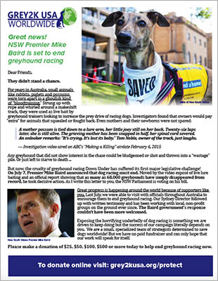 Fundraising letter |  View as PDF