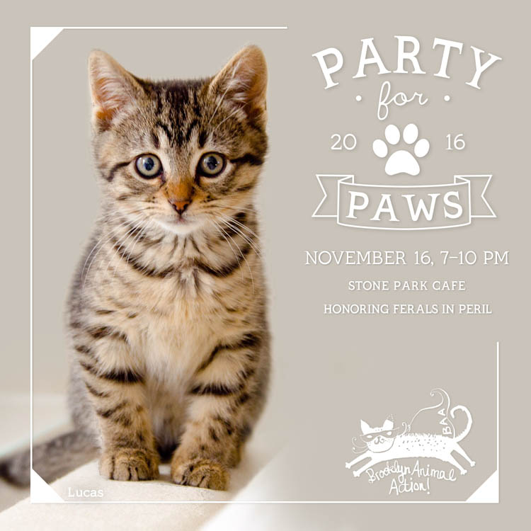 Party-for-Paws-2016-square-Lucas-update.jpg