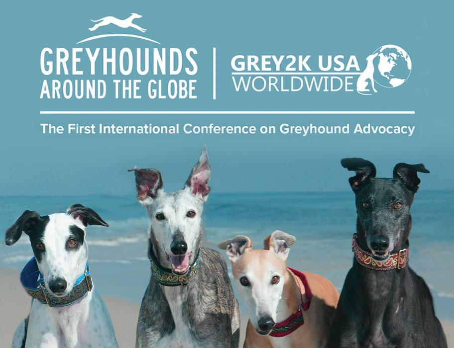 Greyhound Advocacy