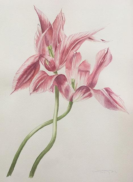 2019-tulips-painting-web.jpg