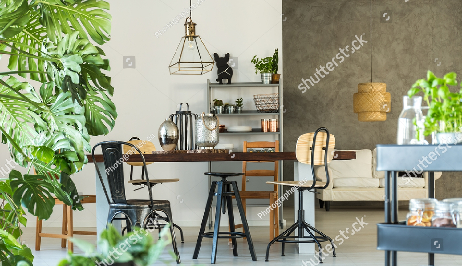 stock-photo-modern-dining-room-with-monstera-plant-carpet-and-kitchen-cart-594920912.jpg