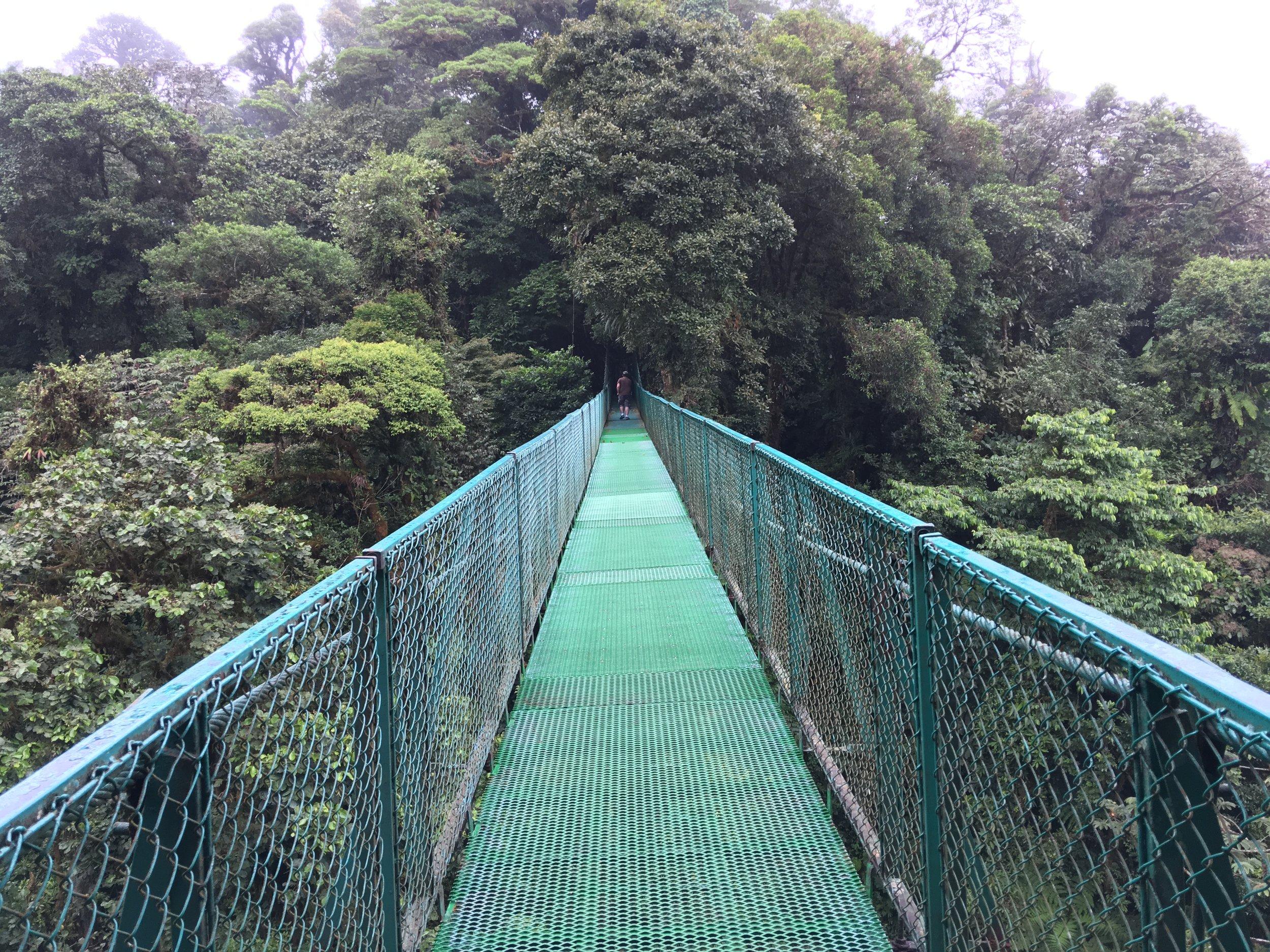 bridge cr.JPG