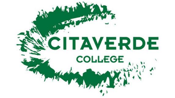 a700150942de644295d21826eb13b3f9-citaverde-college_2014_0.b023d7a1.jpg