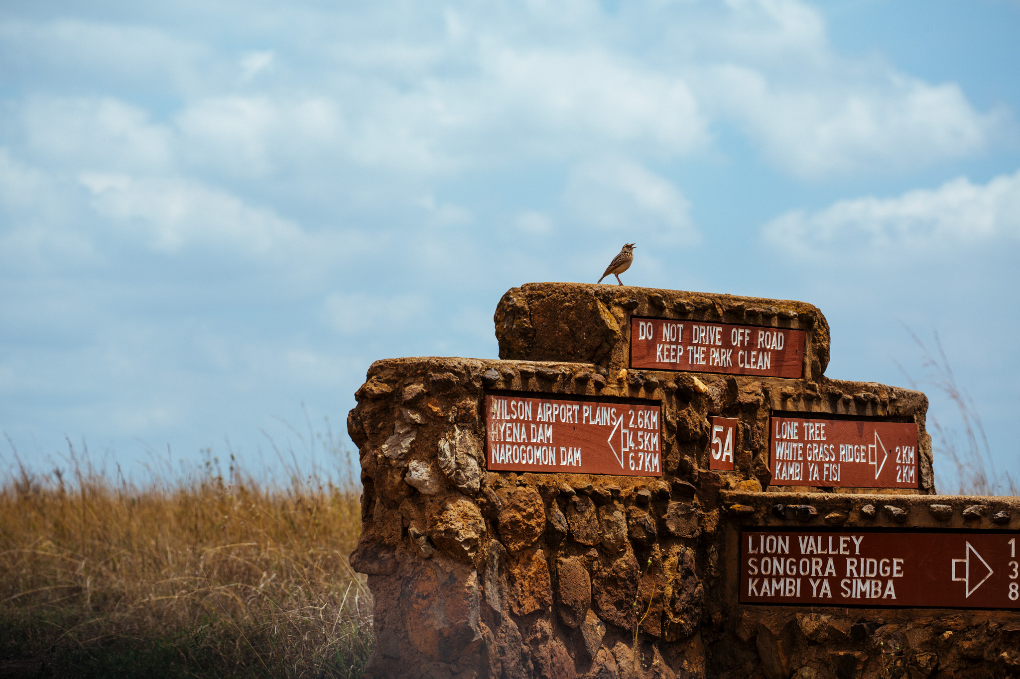 Nairobi National Park . The reserve within a city.