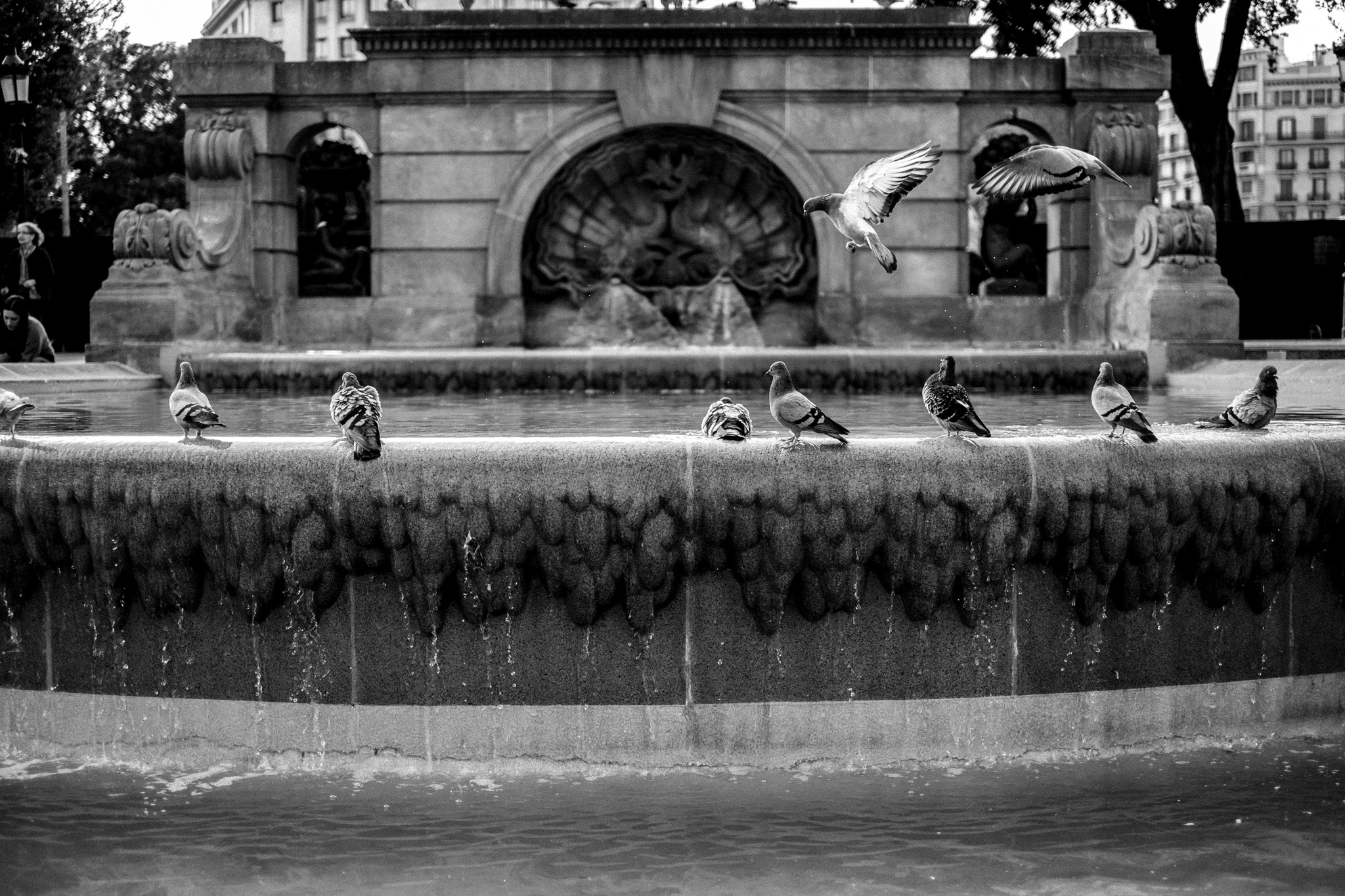 Probably a usual hangout for Barcelona's many pigeons…