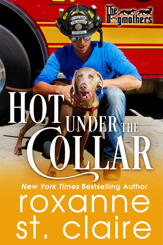 HOT UNDER THE COLLAR by Roxanne St. Claire