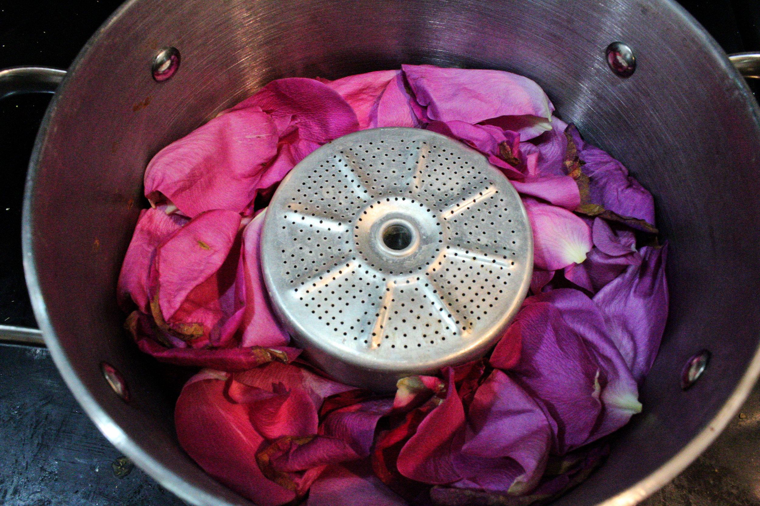 rosepot1.jpg