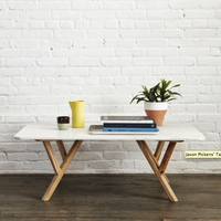 Steven Alan - Marble coffee table_preview.png