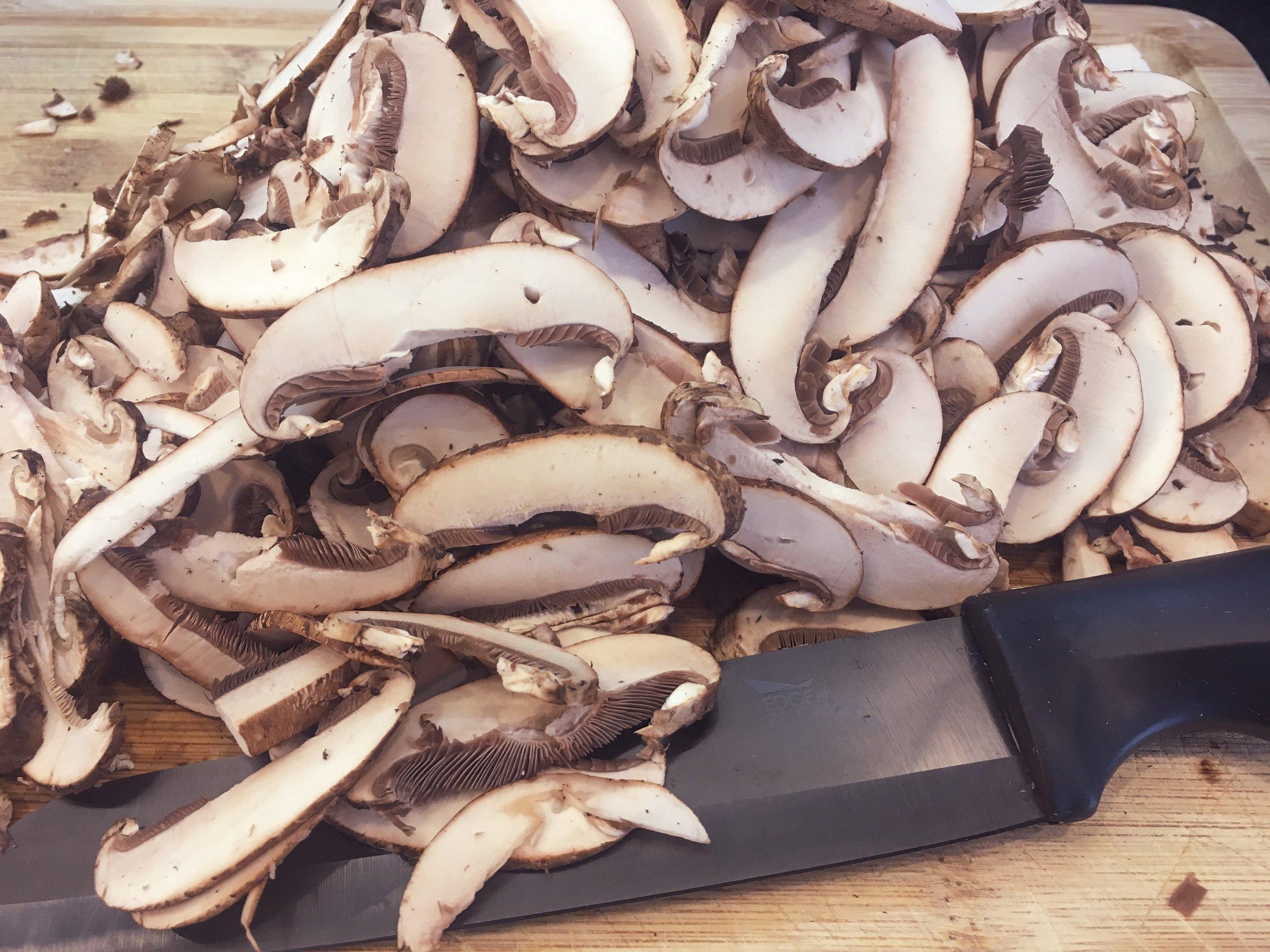 A mountain of mushrooms!