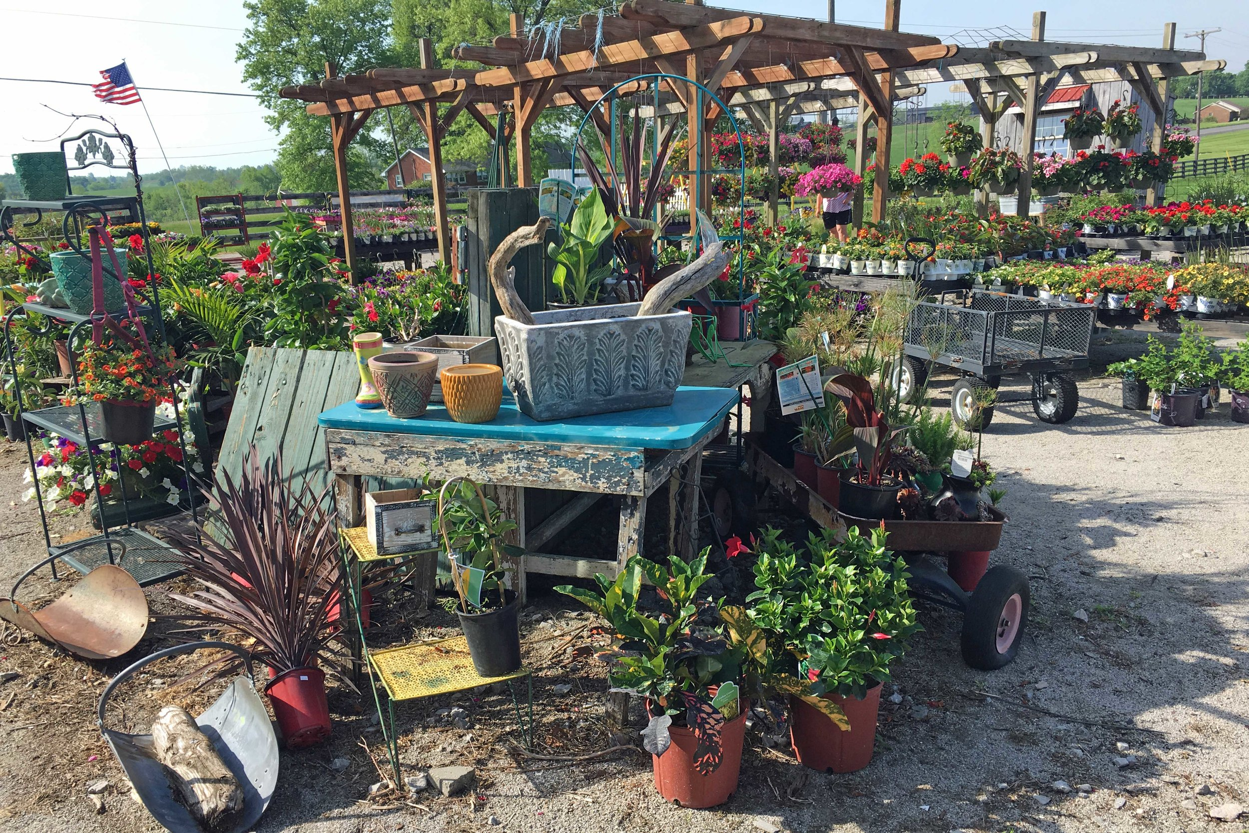 a-sunshine-grow-shop-w (1).jpg