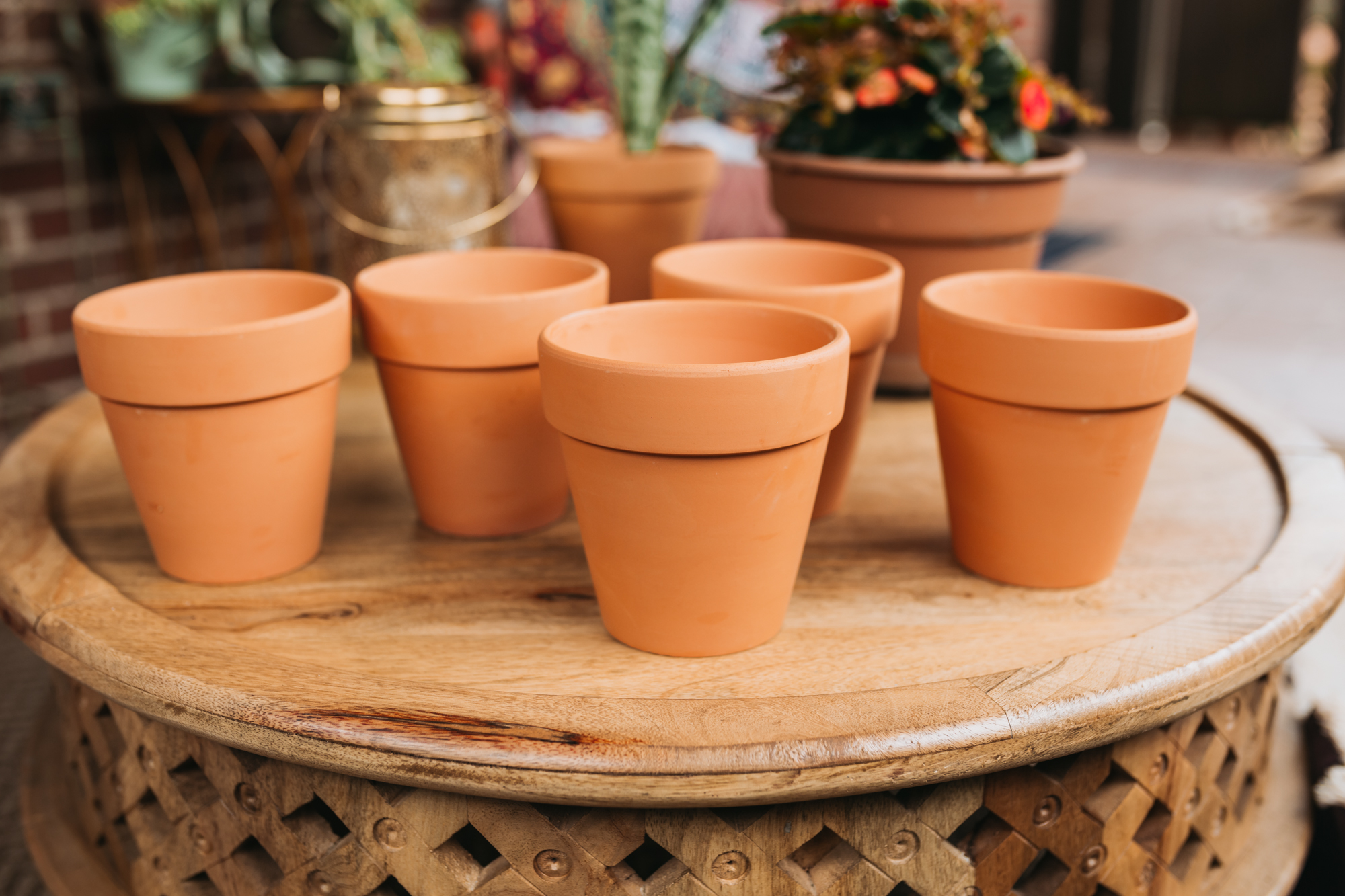 Clean and bare Terra Cotta pots
