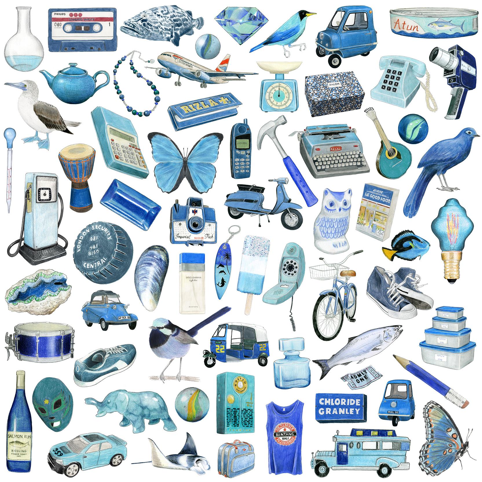 Blue drawings.