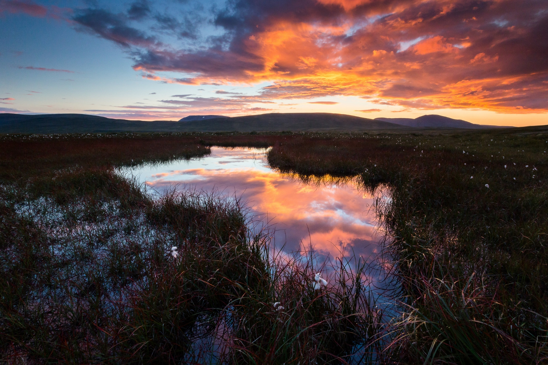A late summer sunset in a swamp on Skagafjörður. I went in totally unprepared but the wet feet were worth the shots I was able to take. The sunset in late summer can be so fiery red that they don't look real.