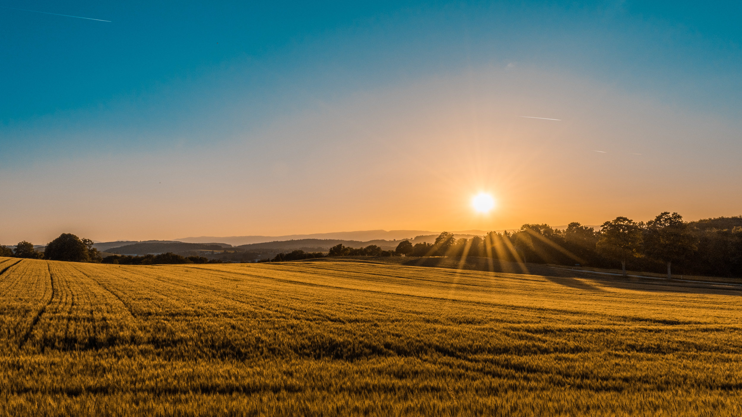The prospective redeemer would not only mar his own inheritance by spending money on land that would belong not to him but would be inherited by Ruth's future son instead of by members of the redeemer's own family. -
