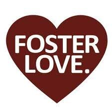 foster love..jpg