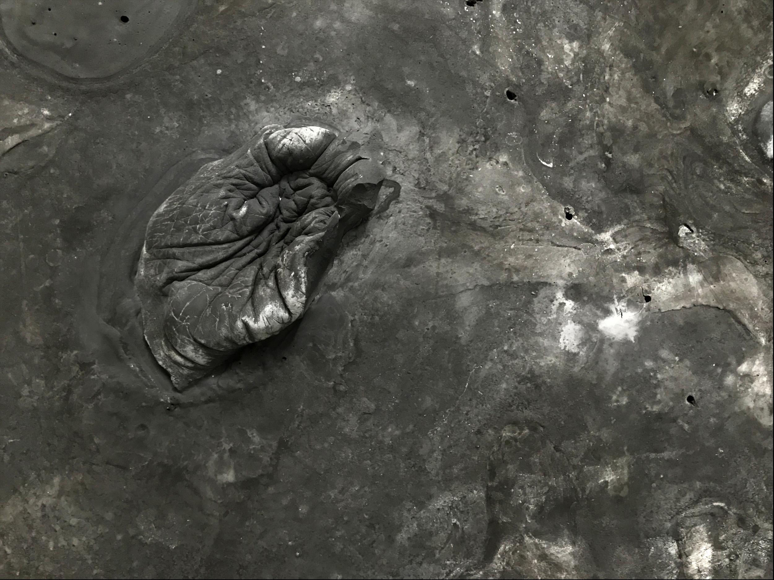 Wendy Richmond hand sculpture slab archaeology