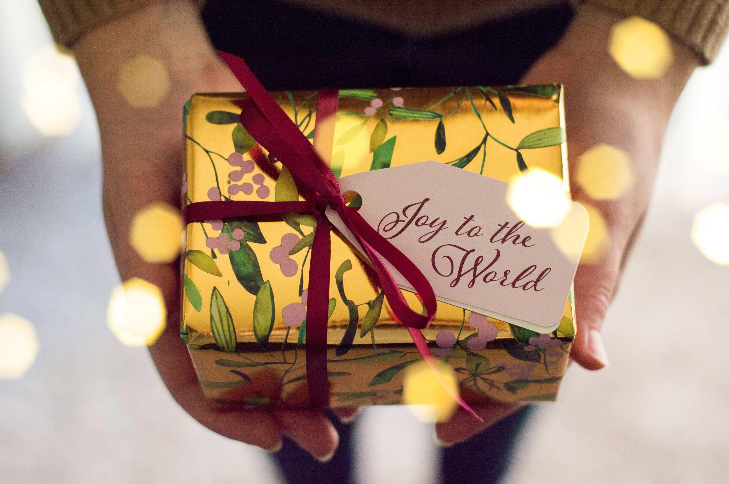 Holiday gift guide, top 20 holiday gifts, vanessa jordan photography, destination wedding photographer