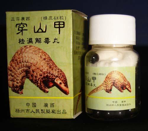 Pangolin-medicine-TRAFFIC.jpg