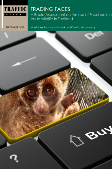 Trading Faces - A rapid assessment on the use of Facebook to trade wildlife in Thailand