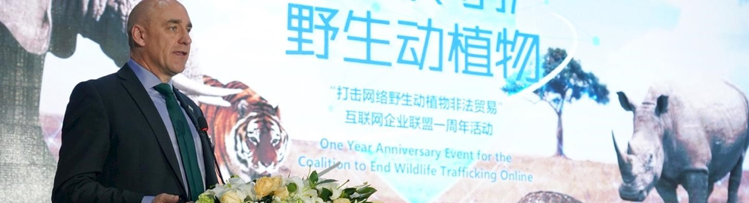 coalition-one-year-event