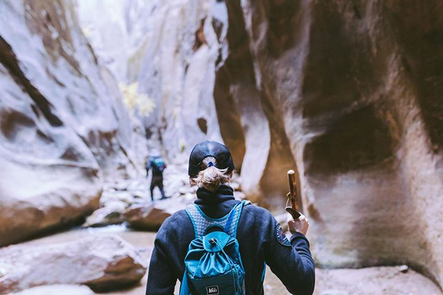 Which campground has the showers? Do you need permits? We've got a complete guide to Zion National Park up on the blog for all of you adventurers—click the link in our bio and go plan your next trip!!
