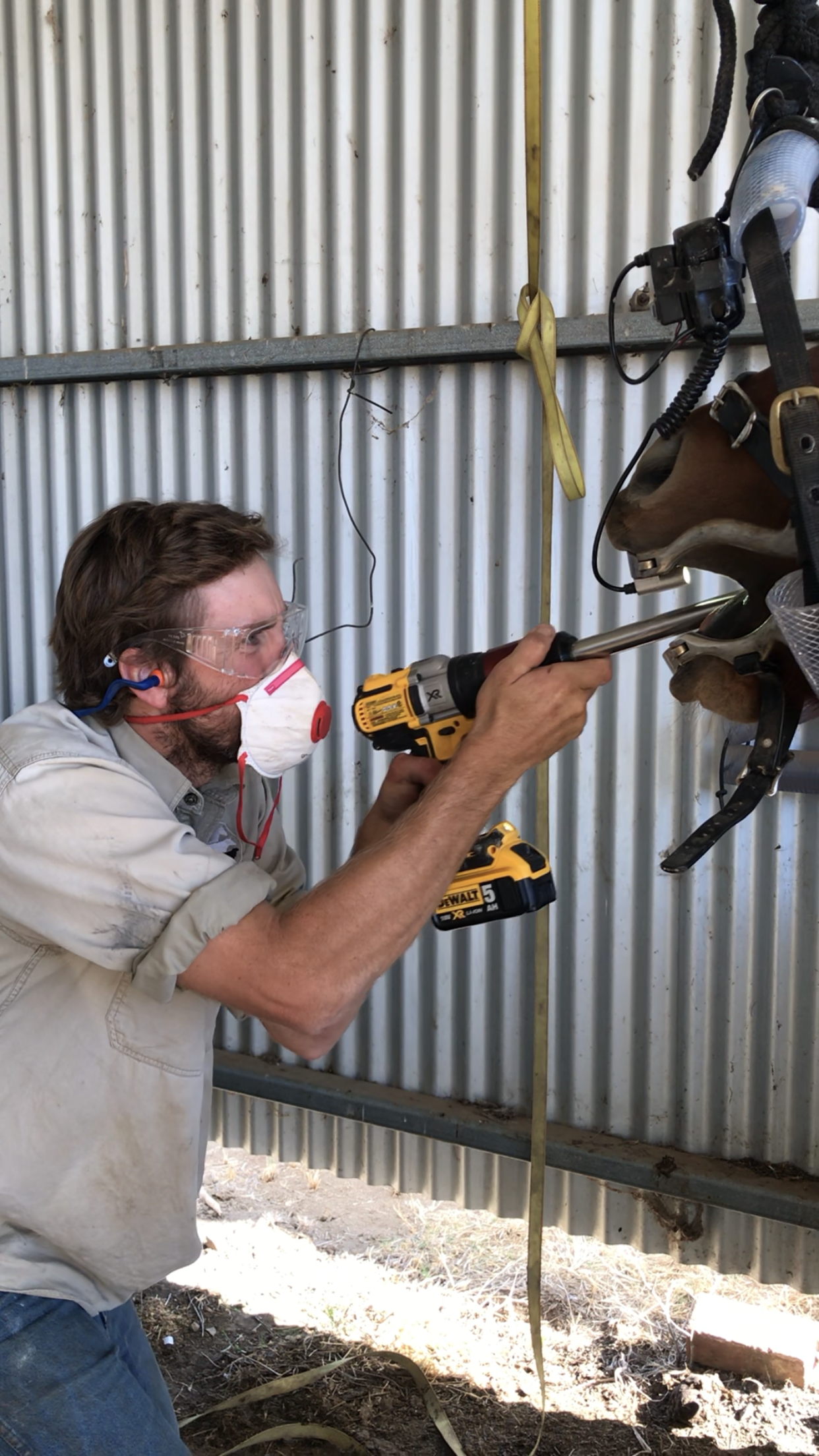 Background - Coolac vet Services started in 1983 by Dr Bill Graham and in 2012 his son Dr Tom Graham joined the practice. Bill graduated from Sydney University with a BVSc in 1979 and Tom graduated from Sydney University with a BVSc in 2009. Both Bill and Tom grew up and live on farms in the Gundagai region and together they run a large primary production business which includes the Bongongo Angus Stud.