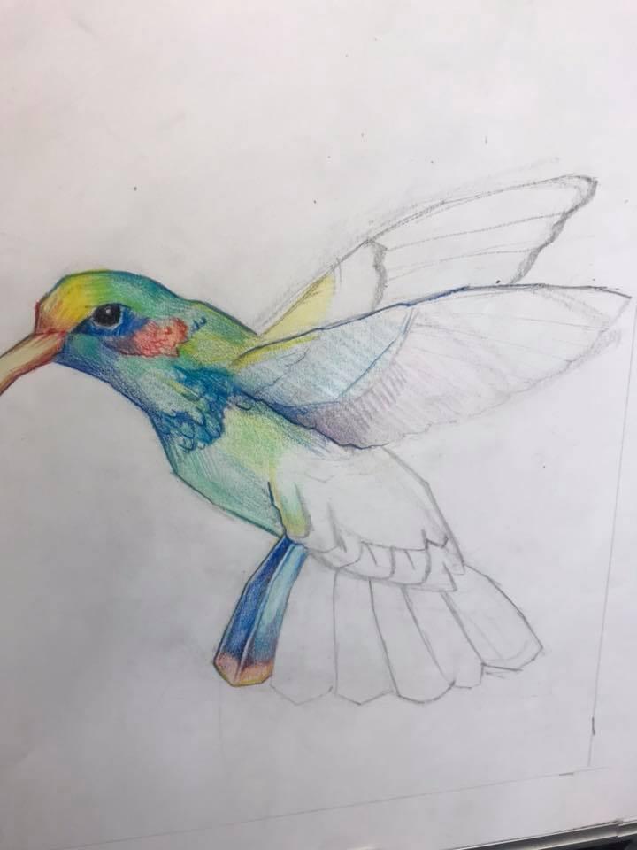 bird level 4.jpg