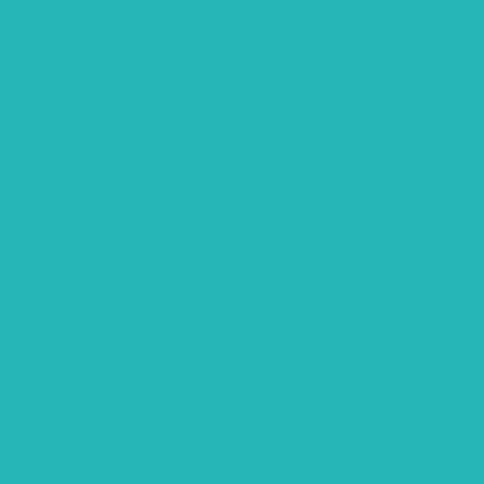 26b6b7 square image.jpg