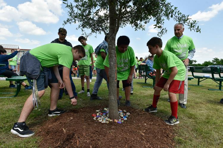 Students place decorated rocks under a tree during a dedication ceremony for Vail's Outdoor Classroom on Wednesday at Pilot Point Intermediate School. The tree is in memory of former classmate Vail Johnson, who passed away unexpectedly on Aug. 31, 2016, from a heart condition. She would have been a sixth-grader now.