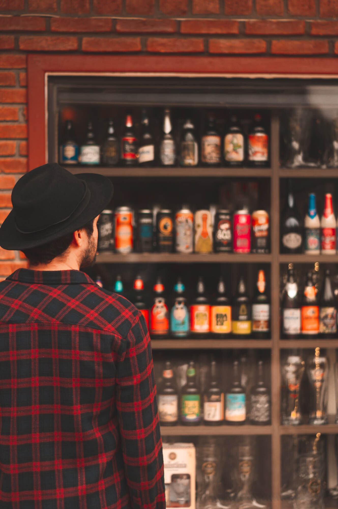 alcoholic-beverages-back-view-beer-2076748.jpg