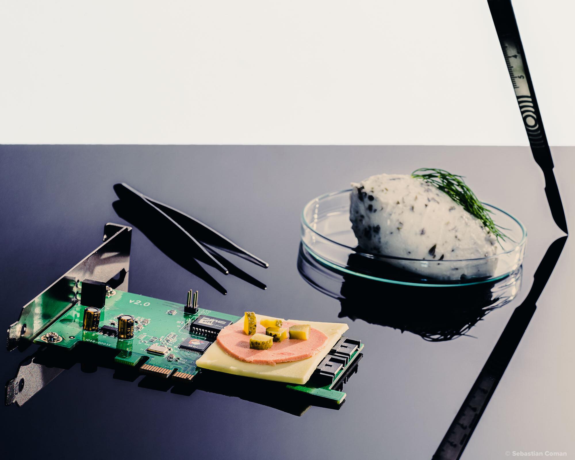 Vegan Food Science Web-3-2.jpg