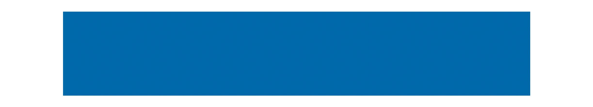 CASIO Logo.png