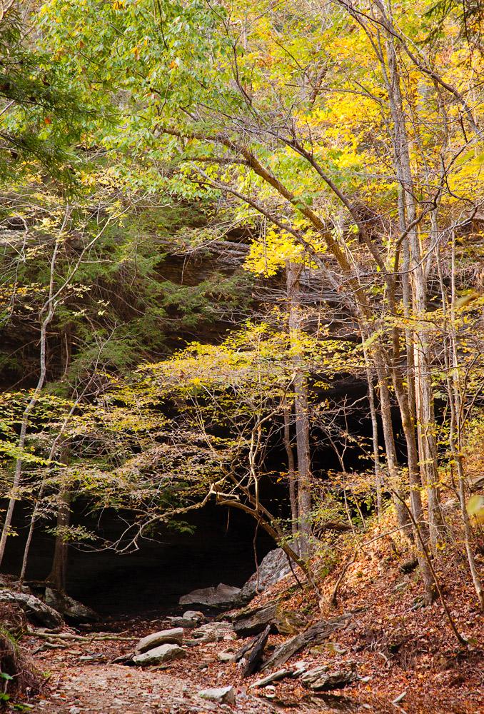 Carter Caves Creek