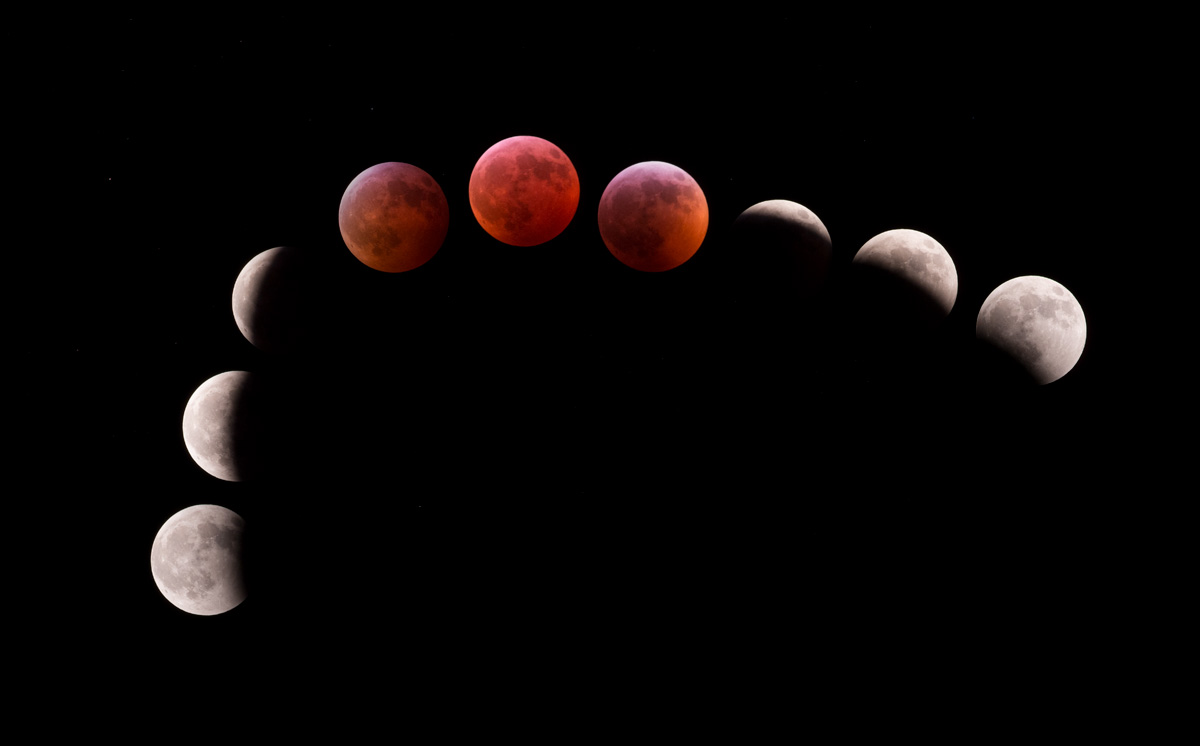 Lunar Eclipse Montage January 2019