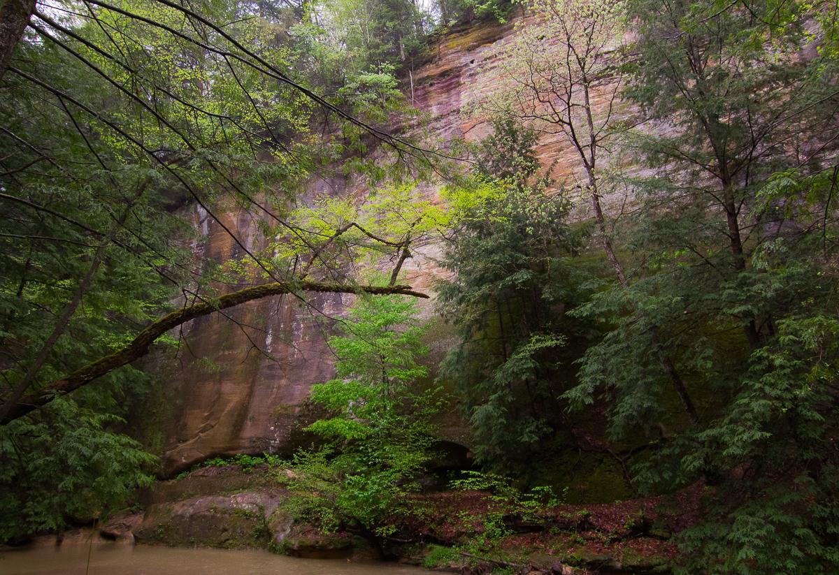 Cedar Falls Canyon Wall