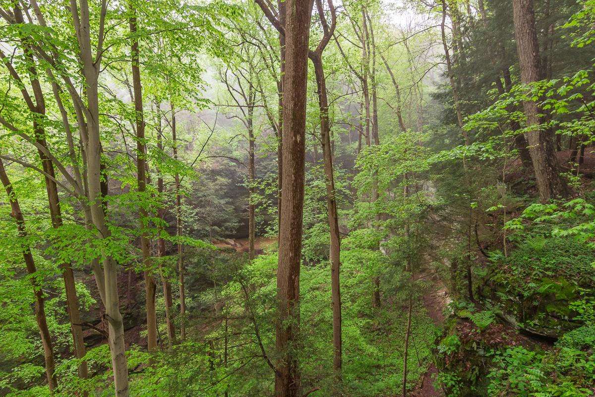 Cantwell Cliffs Rim