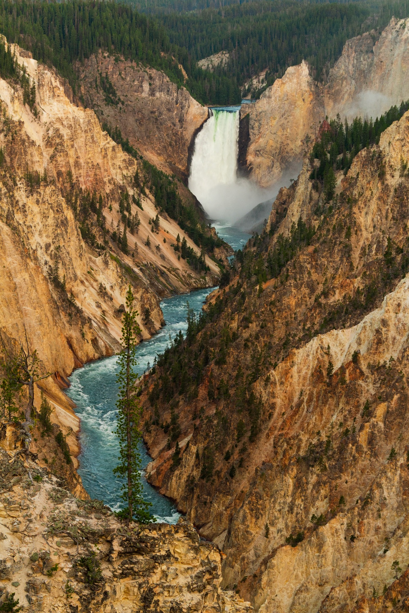 Lower Falls of Grand Canyon of Yellowstone 1