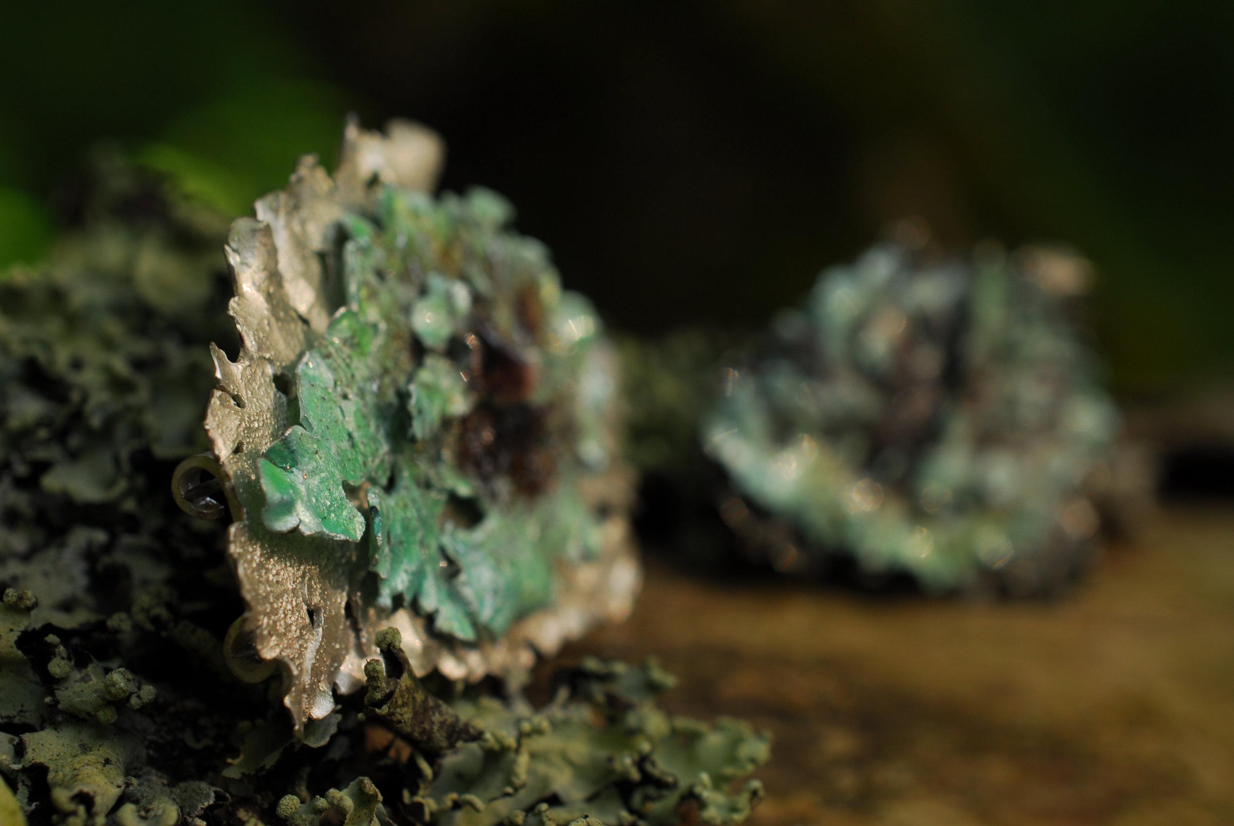 Lichen Jewellery