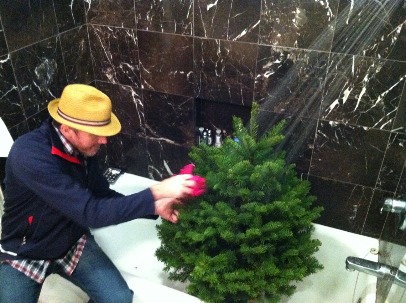 Paul decides to give the tree a nice little scrub.JPG