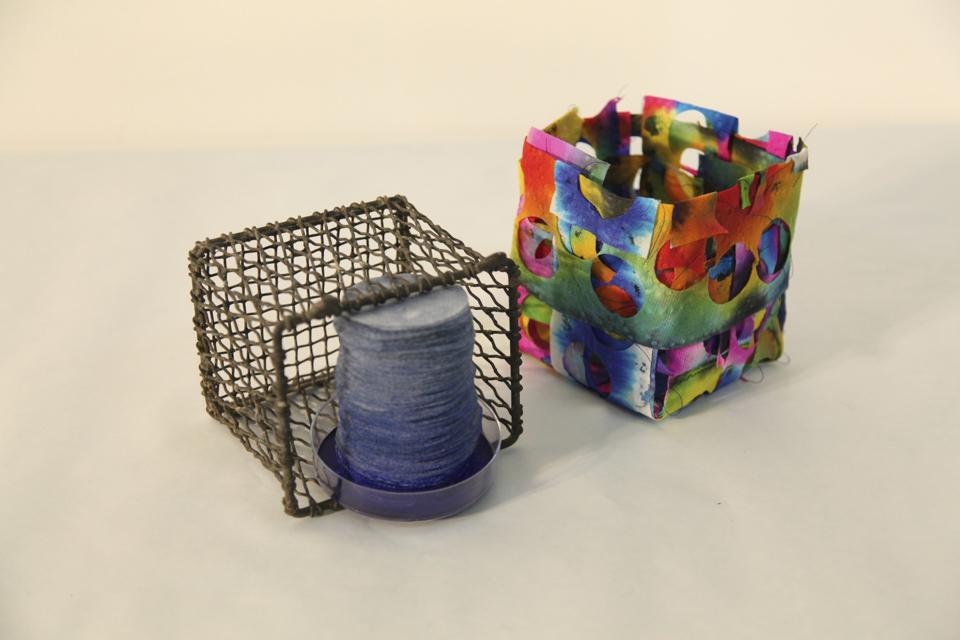 Screen Basket and Died Paper towels.jpg