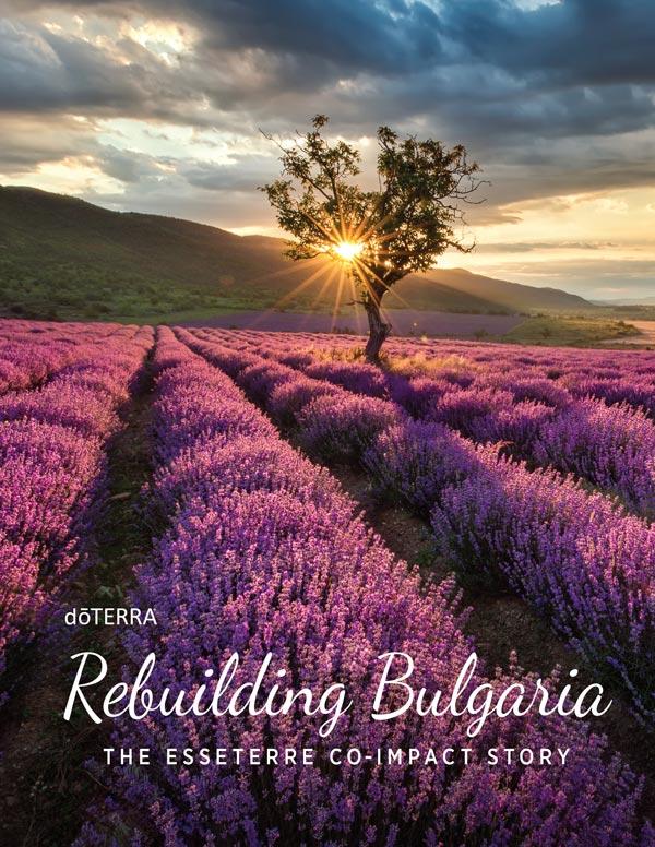 View Bulgaria Sourcing Brochure