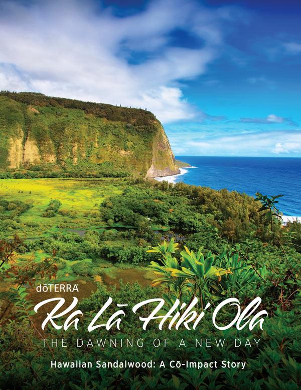 View Hawaii Sourcing Brochure