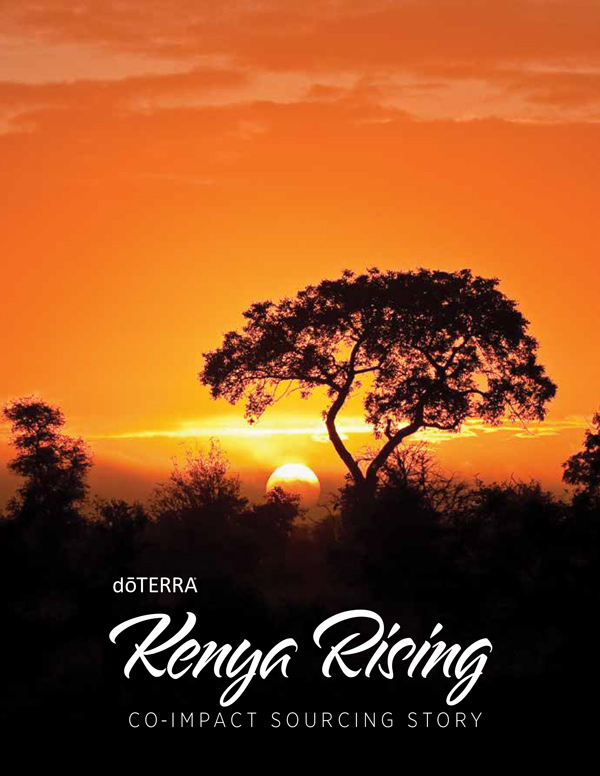 View Kenya Sourcing Brochure