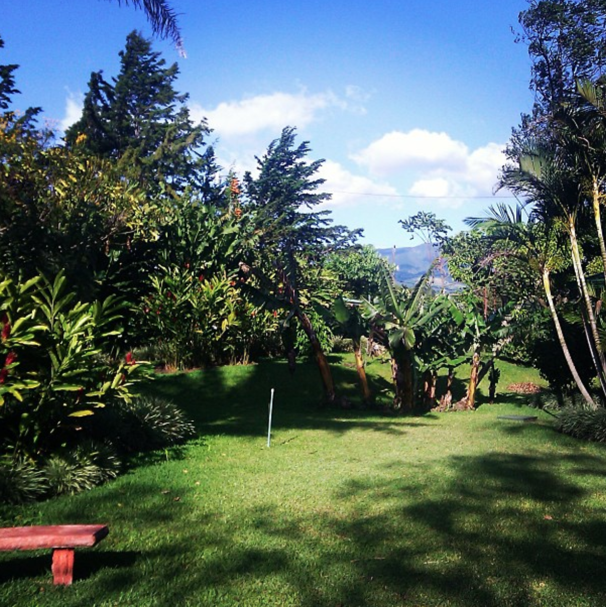 The Doka Estate Coffee Plantation offers a beautiful view for visitors.