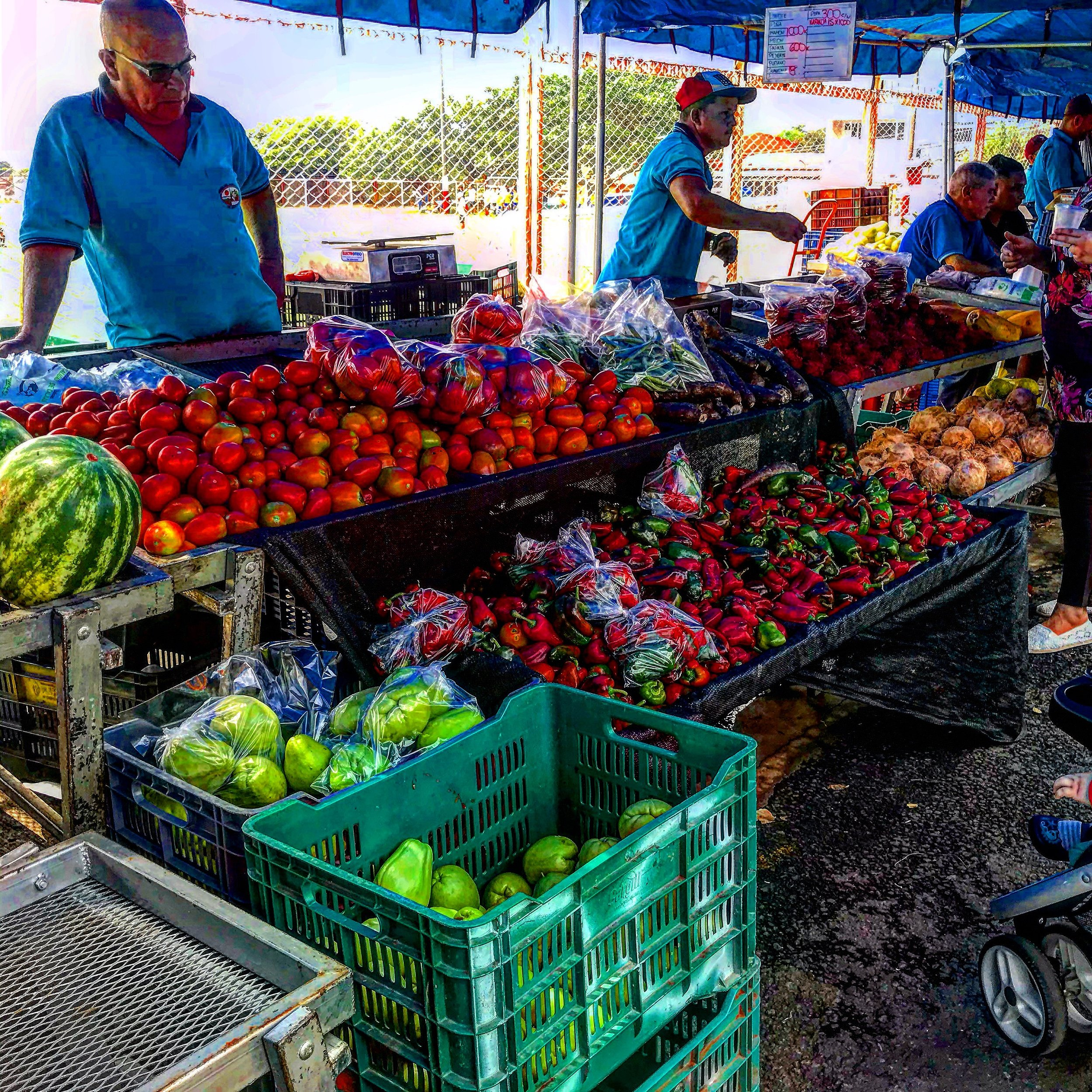 Vendor at the Farmers Market in Barva de Heredia