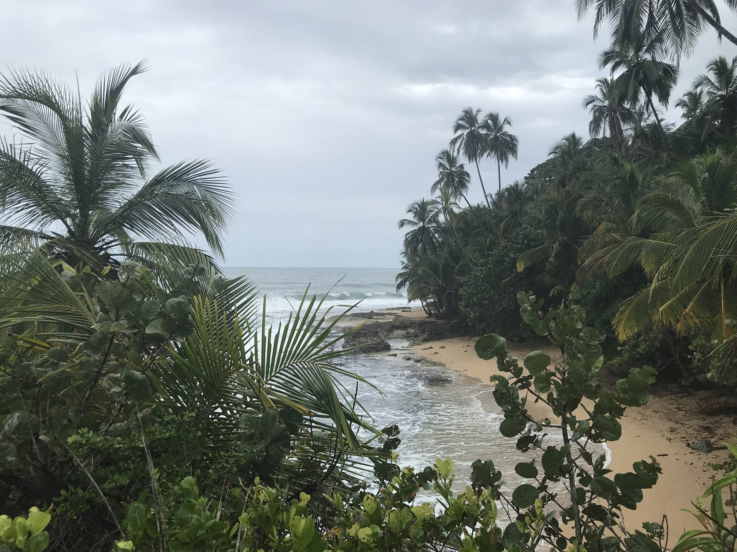 There are small coves around the beach near Punta Uva and Manzanillo - Go to Gandoca-Manzanillo National Wildlife Refuge for a nice trail hike next to the beach.